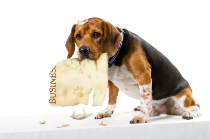 Don't turn your Leaflet Into a Dog's Dinner