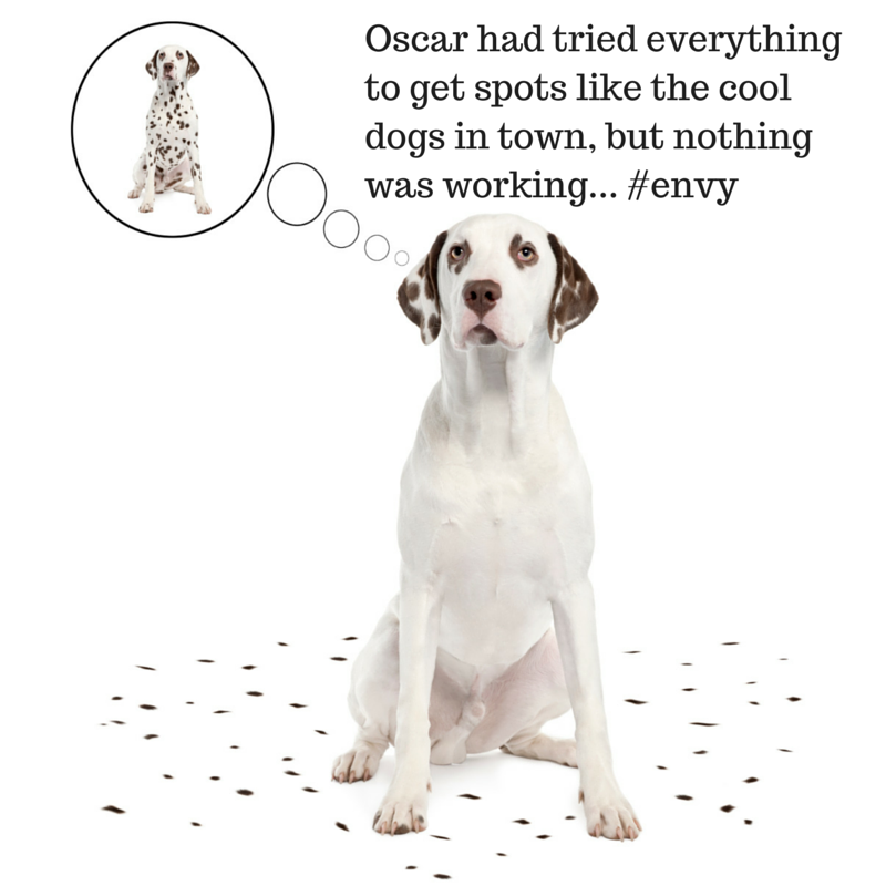 Oscar had tried everything to get spots
